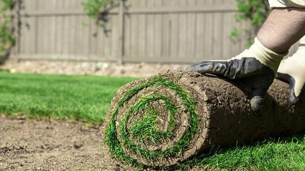 Landscaping Industry